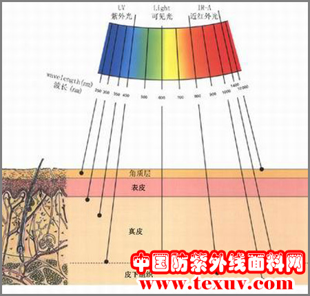 UV应用技术简介
